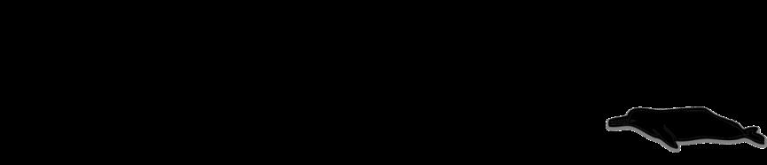 BorneoSpecies