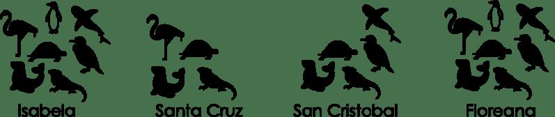 GalapogasWildlife