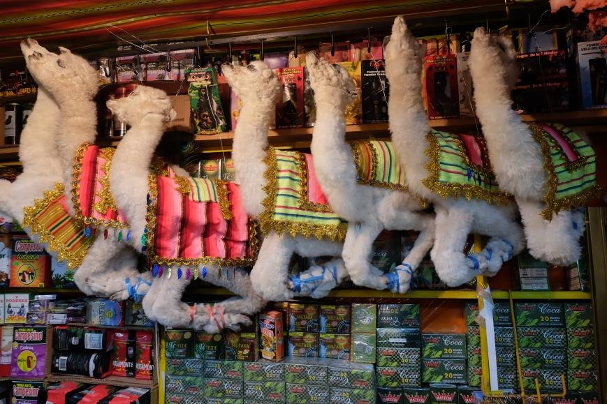 llama fetuses at Witchs' Market La Paz Bolivia