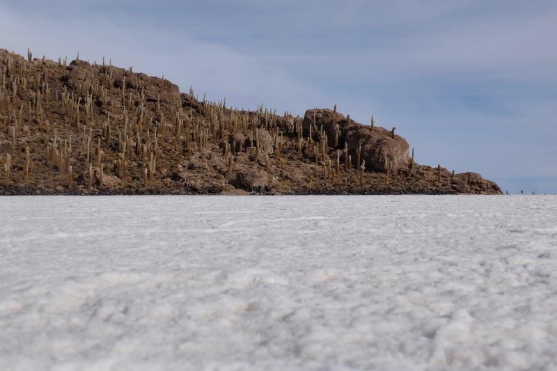 Isla Incahuasi Uyuni Bolivia